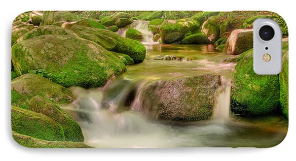 IPhone Case featuring the photograph Mossy Beauty by Cindy Haggerty