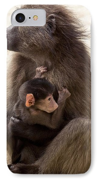 Mother And Baby Chacma Baboon Phone Case by Bob Gibbons
