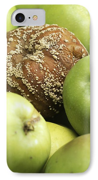 Mouldy Apple Phone Case by Sheila Terry