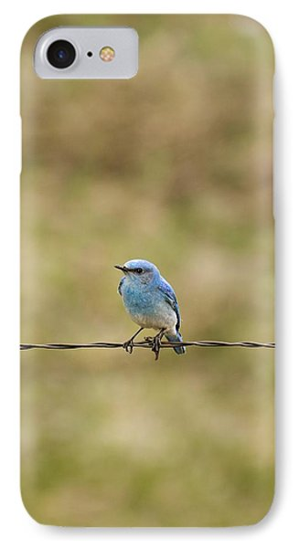 Mountain Bluebird On A Fence Wire Phone Case by Philippe Widling