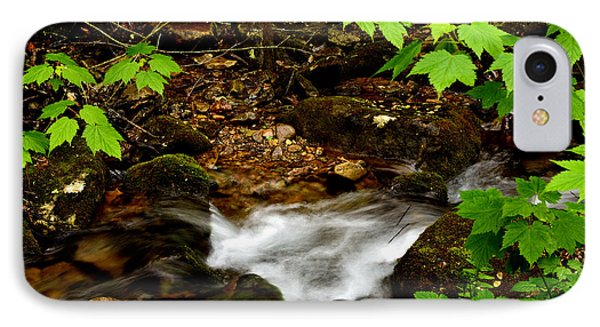 Mountain Stream In Spring Phone Case by Thomas R Fletcher