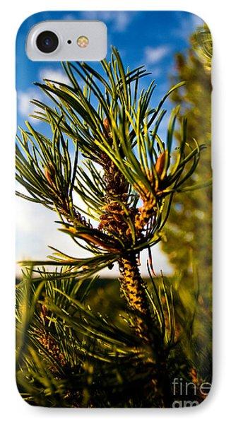 Mugo Pine Branch Phone Case by Terry Elniski