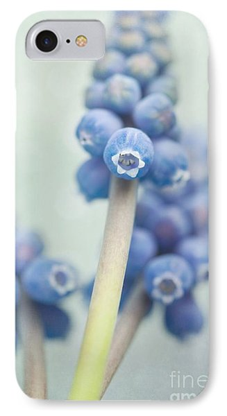 Muscari IPhone Case by Priska Wettstein
