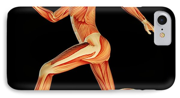 Muscular System Phone Case by Pasieka