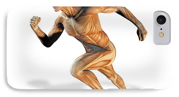 Muscular System Phone Case by Victor Habbick Visions