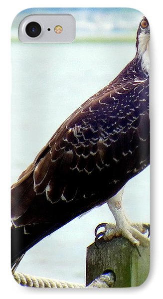 My Feathered Friend Phone Case by Karen Wiles