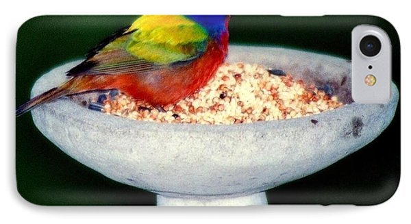 My Painted Bunting Phone Case by Karen Wiles