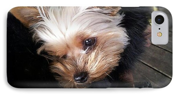 My #princess #dog #yorkie IPhone Case