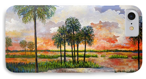 IPhone Case featuring the painting Myakka Sunset by Lou Ann Bagnall