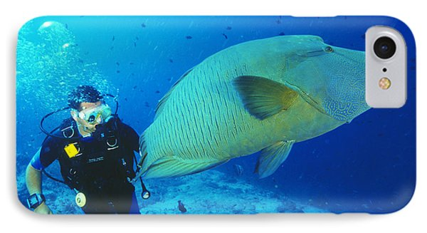 Napoleon Wrasse And Diver Phone Case by Matthew Oldfield
