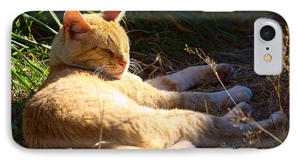 IPhone Case featuring the photograph Napping Orange Cat by Chriss Pagani