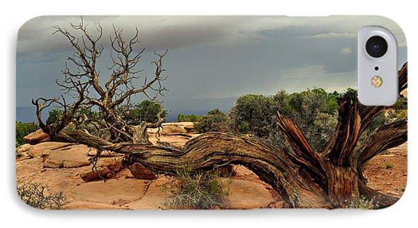 Narley Tree Phone Case by Marty Koch