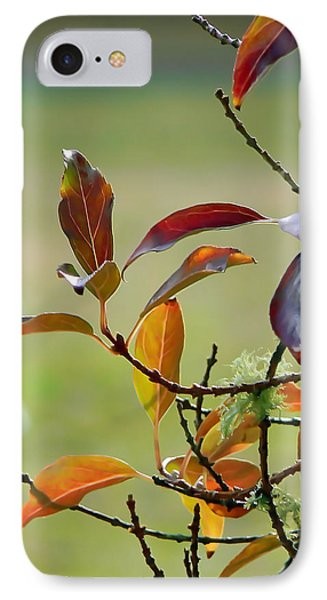 Natural Autumn Phone Case by Pamela Patch