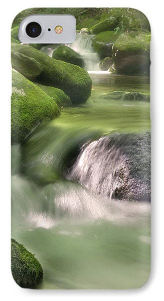 IPhone Case featuring the photograph Natural Beauty by Cindy Haggerty