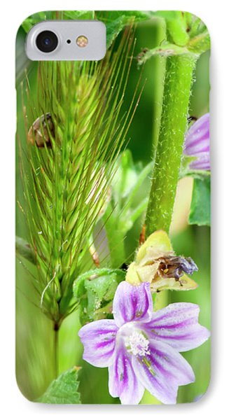 IPhone Case featuring the photograph Natural Bouquet by Pedro Cardona