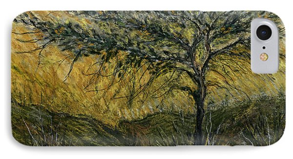 Nature Landscape Green Thorns Acacia Tree Flowers Sunset In Yellow Clouds Sky  IPhone Case