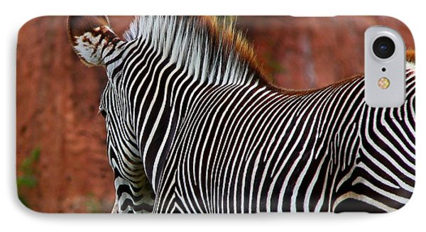 IPhone Case featuring the photograph Nature's Barcode by Davandra Cribbie