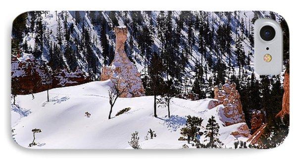 Navajo Loop Trail Phone Case by Viktor Savchenko