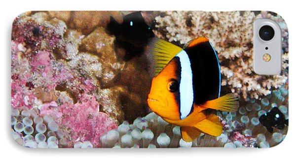 Nemo Phone Case by Jean Noren