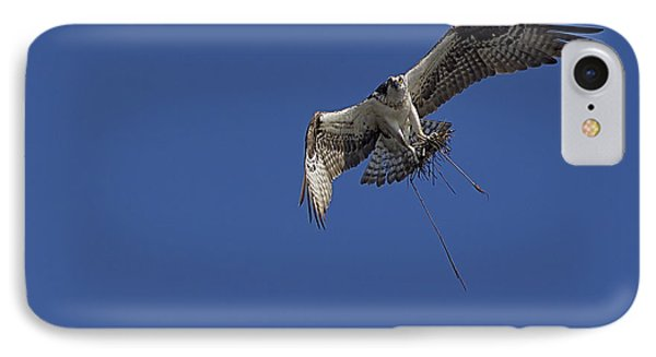 IPhone Case featuring the photograph Nest Builder by Anne Rodkin