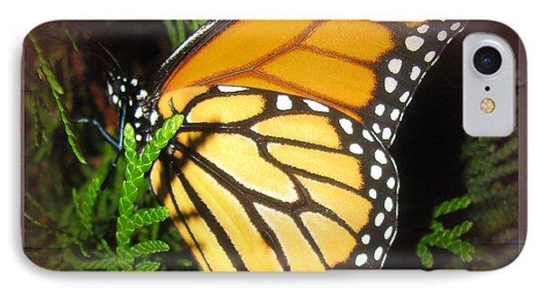 New Born Butterfly Phone Case by Debra     Vatalaro