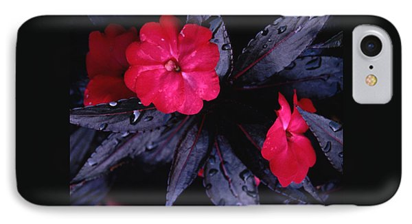 IPhone Case featuring the photograph New Guinea Impatiens by Tom Wurl