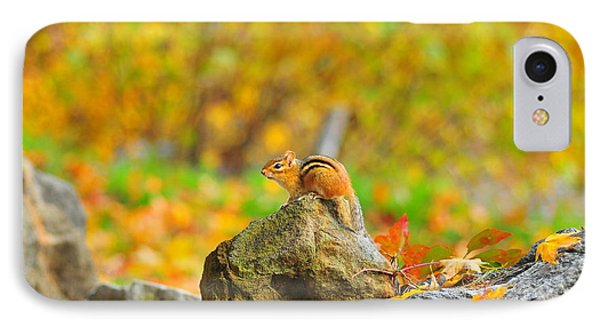 New Hampshire Chipmunk Phone Case by Catherine Reusch Daley