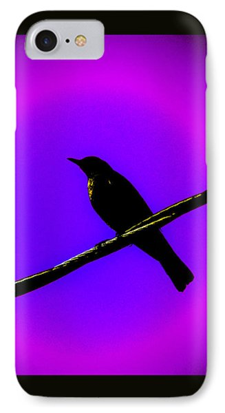 IPhone Case featuring the photograph New Mu Robin by Susanne Still