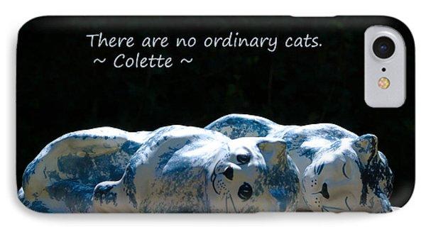 No Ordinary Cats IPhone Case by Dagmar Batyahav