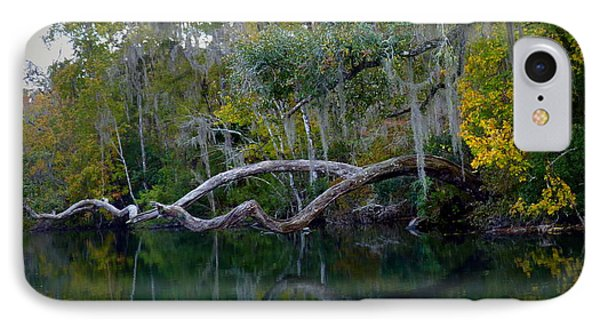North Florida River Reflections Phone Case by Carla Parris