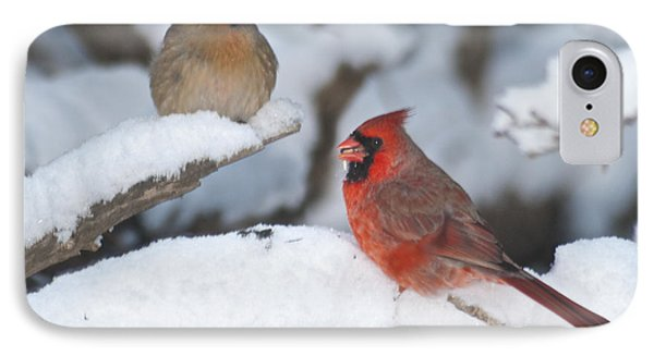 Northern Cardinal Pair 4284 2 Phone Case by Michael Peychich