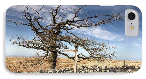 Northumberland, England A Leafless Tree Phone Case by John Short