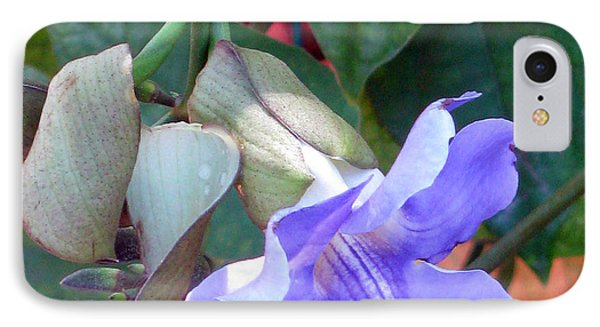 IPhone Case featuring the photograph Nothing But Blue Sky by Debi Singer