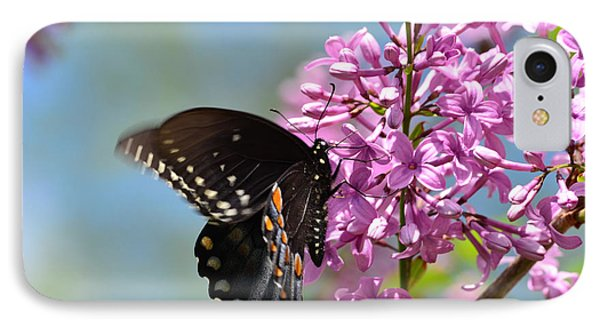 Nothing Says Spring Like Butterflies And Lilacs IPhone Case by Lori Tambakis