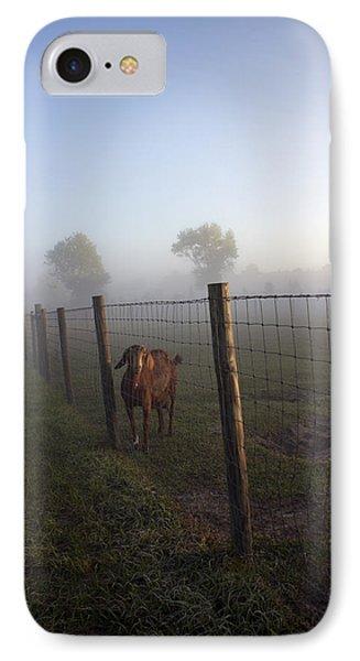 Nubian Goat IPhone Case by Lynn Palmer