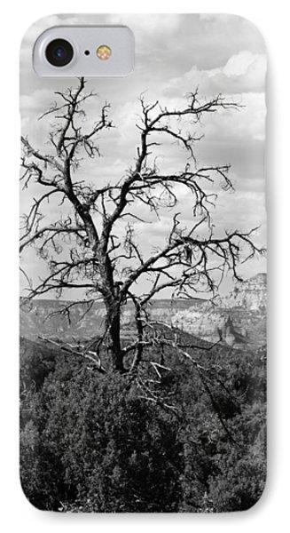 Oak Creek Tree IPhone Case by Lauri Novak