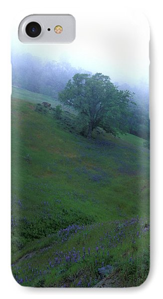 Oak With Lupine In Fog Phone Case by Kathy Yates