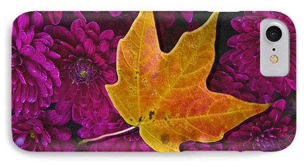 October Hues Phone Case by Paul Wear