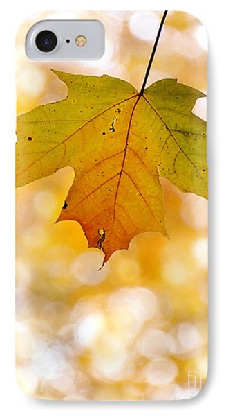 October Maple Leaf Phone Case by Angie Rea