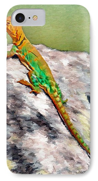 Oklahoma Collared Lizard Phone Case by Jeffrey Kolker