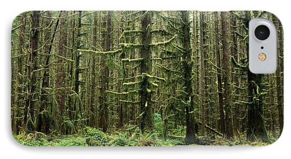 Old Growth Forest In The Hoh Rain Phone Case by Natural Selection Craig Tuttle