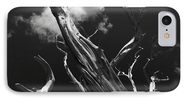 IPhone Case featuring the photograph Old Tree by David Gleeson