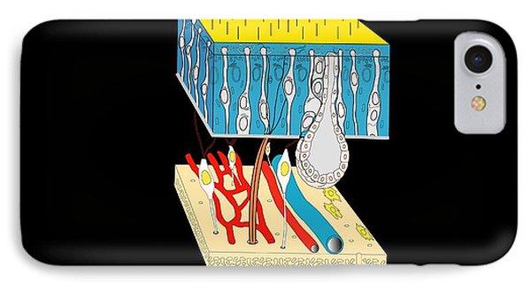 Olfactory Epithelium, Artwork Phone Case by Francis Leroy, Biocosmos