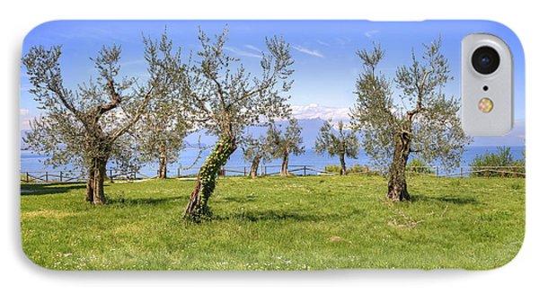 olive grove on Lake Gardan Phone Case by Joana Kruse