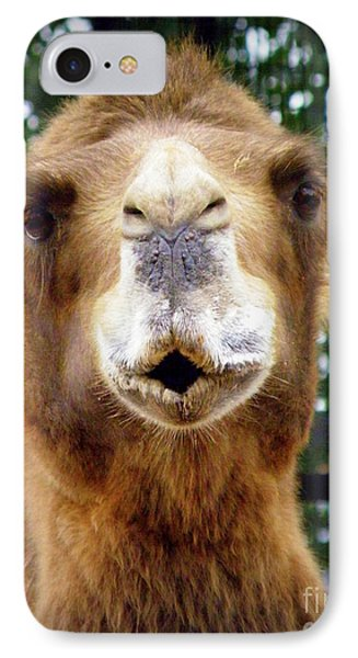 Omar The Camel Phone Case by Lainie Wrightson