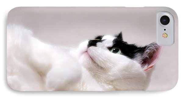 One Belly Rub Please IPhone Case by JM Photography