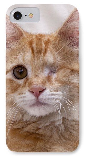 One Eye Willie IPhone Case by John Crothers