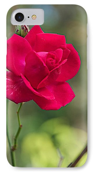 IPhone Case featuring the photograph One Rose by Joseph Yarbrough