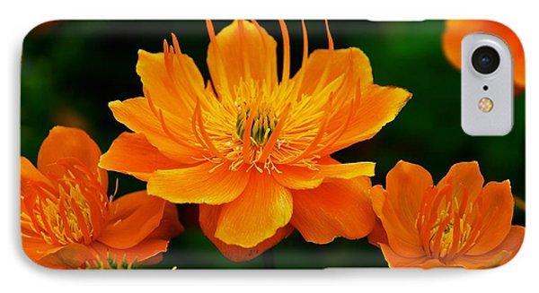 Orange And Yellow Phone Case by Eric Tressler