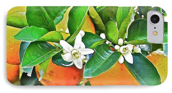 Orange Blossom Special Phone Case by Carol  Bradley